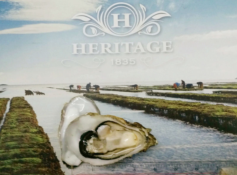 Heritage 1835 Oyster
