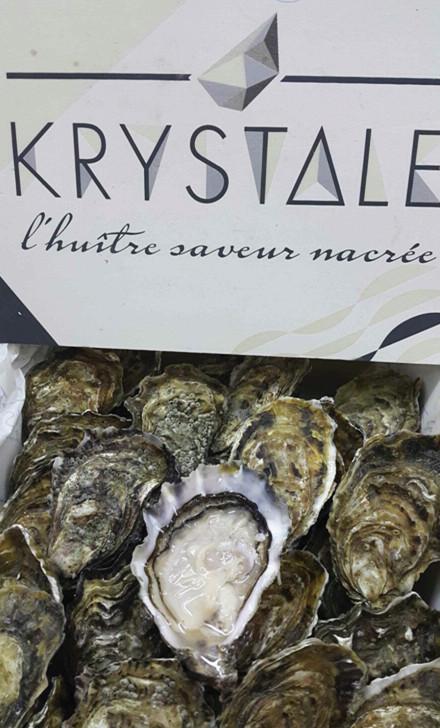 Special Krystale Oster